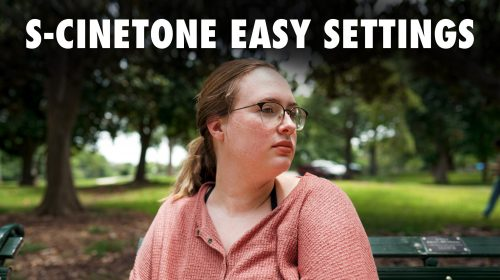 S-Cinetone Easy Filmmaking Settings