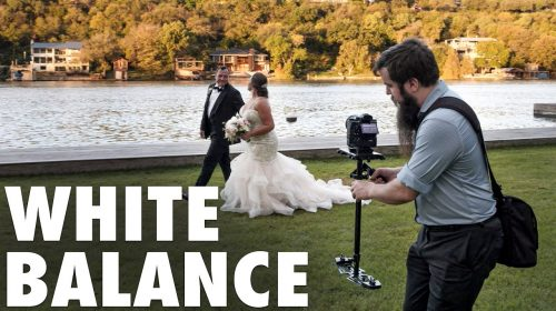 White Balance For Video EXPLAINED - How Cameras See Color & Light